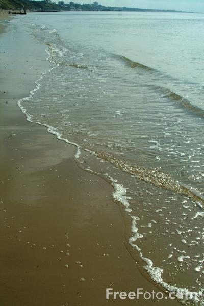 15_11_86---Sea_web