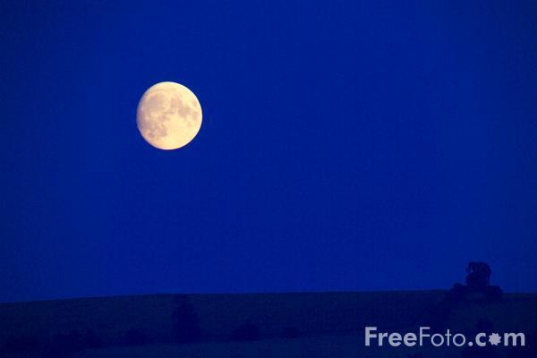 15_87_4---Moon_web